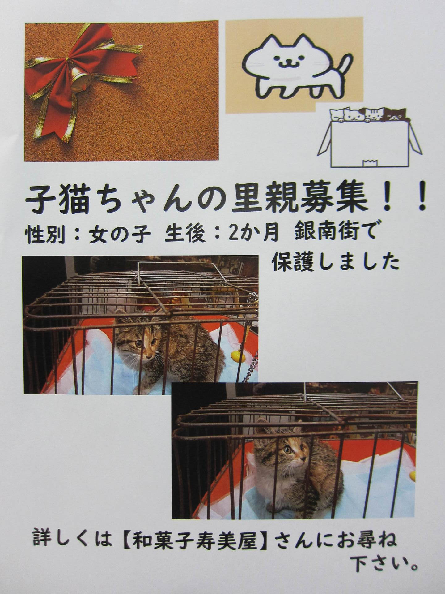 IMG_0060-001.JPG
